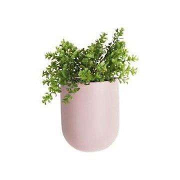 Present Time Wand-Blumentopf oval, pink